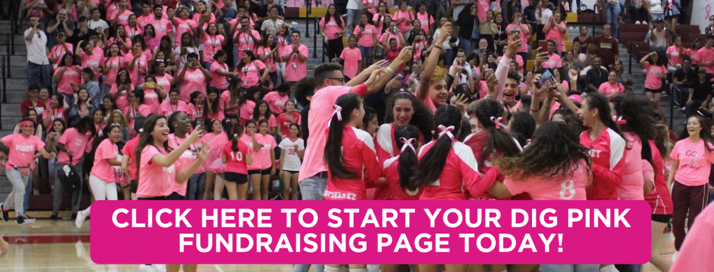 Get Started with Dig Pink