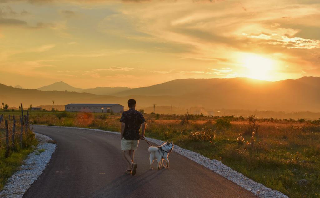 Simple image man walk dog down streen