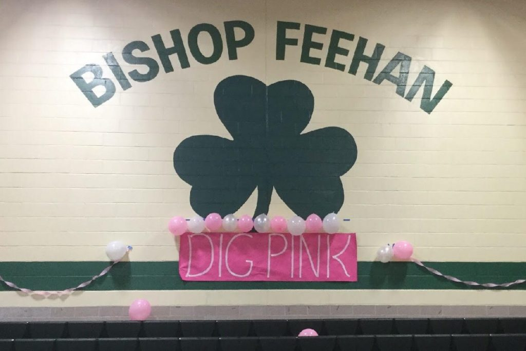 Bishop Feehan Dig Pink